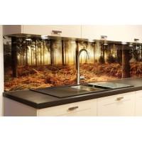 Фартуки из стекла для кухни